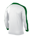 Nike Striker IV LS Tee - White / White / Pine Green