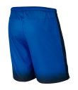 Nike Laser Woven Printed Short - Royal Blue/Black